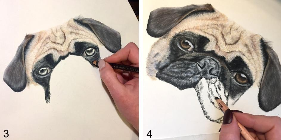 hund zeichnen anleitung