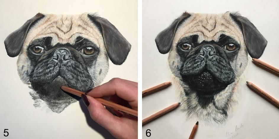 hund zeichnen lernen
