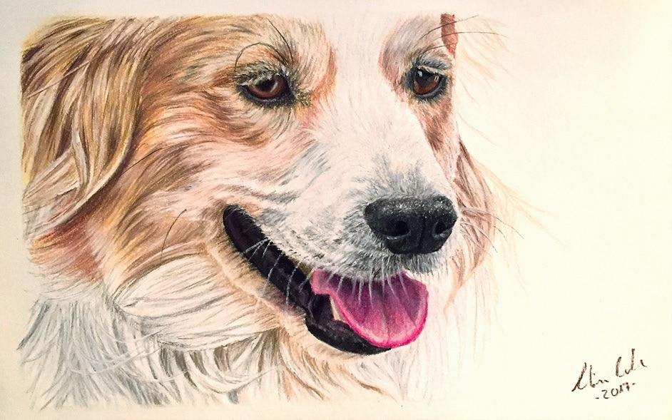 Hund Gemälde