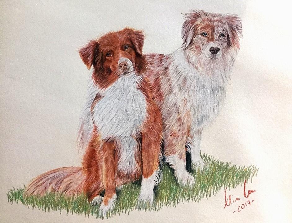 hunde zeichnen anleitung1