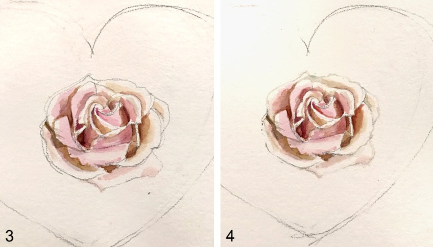 Rose Zeichnen Einführung In Das Malen Von Rosen In Aquarell