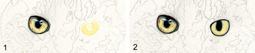 tiere zeichnen anleitung