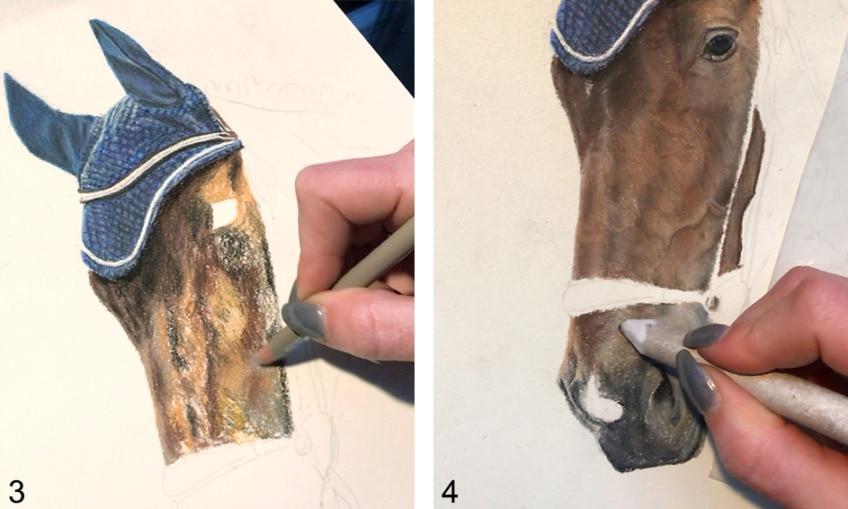 pferd zeichnen anleitung