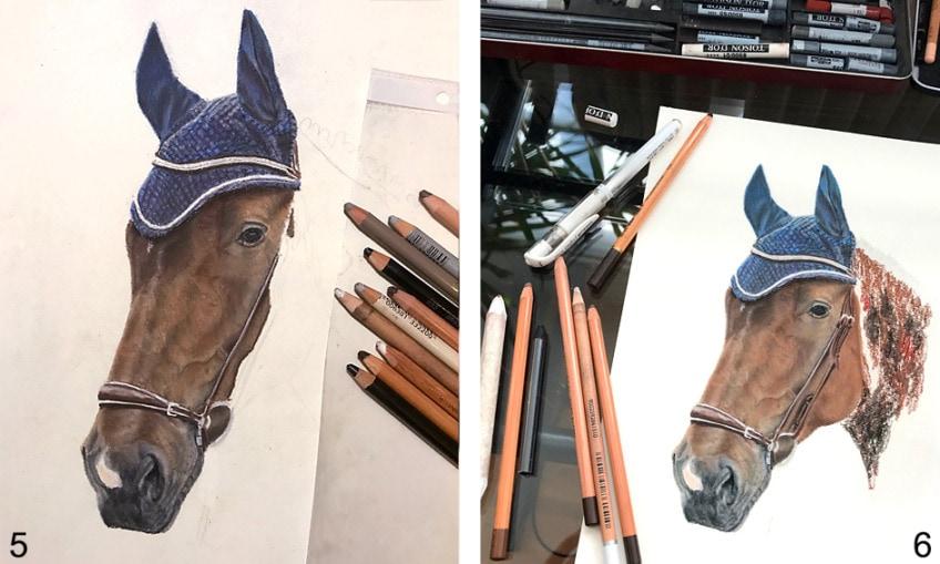 pferd zeichnen einfach