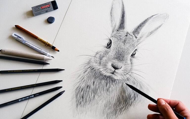 Hase zeichnen – In 10 Schritten ganz einfach einen Hasen malen