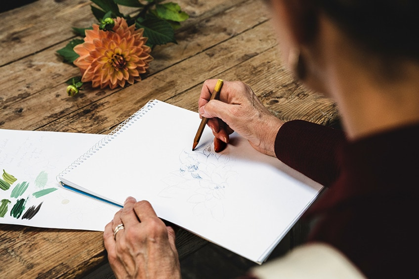 blume bleistift zeichnen