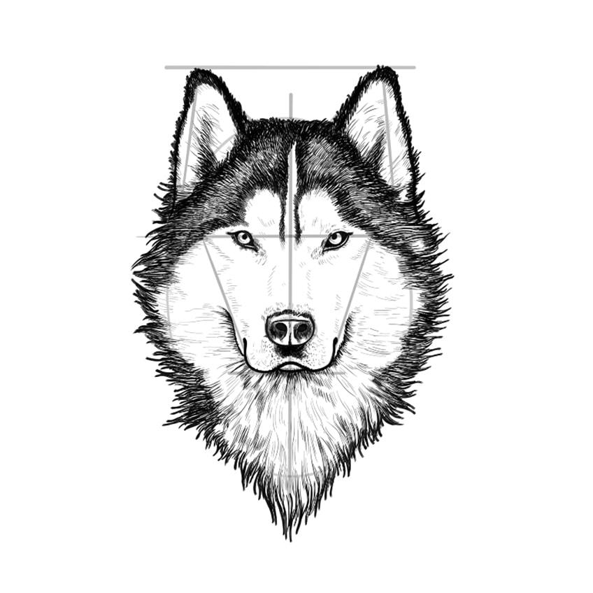 wolf malen
