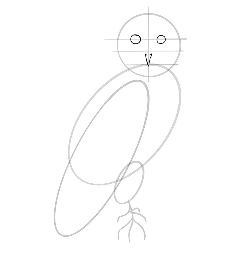 eule zeichnen schritt 07