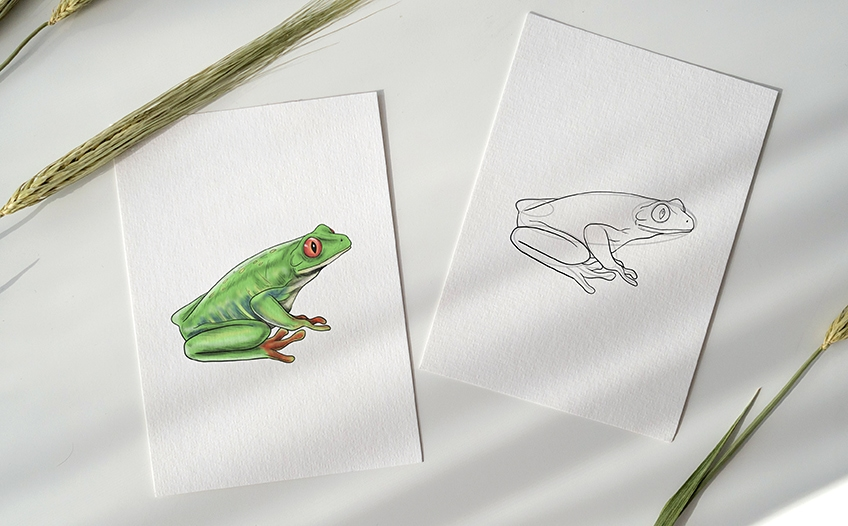 frosch malen