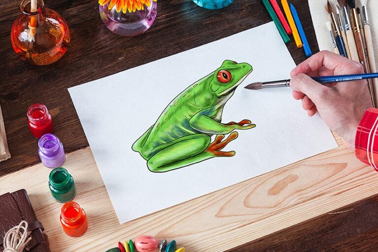 Frosch zeichnen – Anleitung um einen realistischen Frosch zu malen