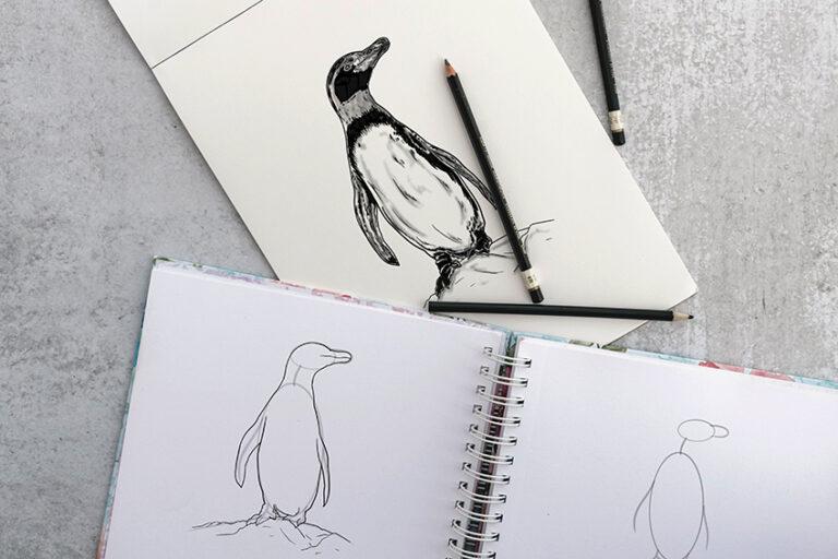 Pinguin zeichnen – Schritt-für-Schritt einen realistischen Pinguing malen