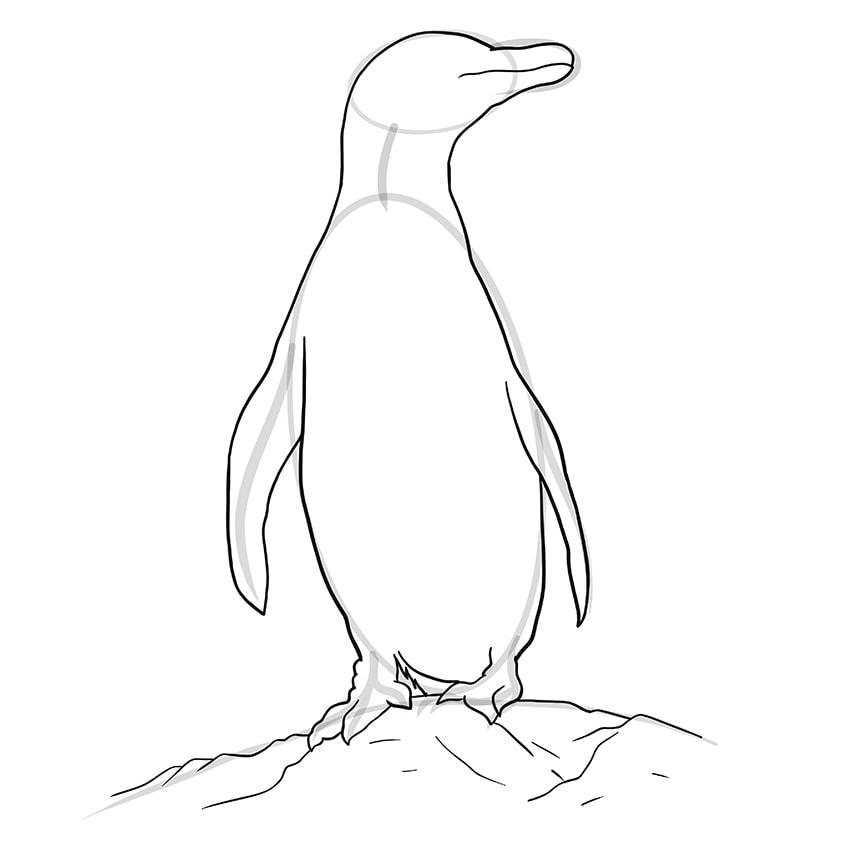 pinguin zeichnen schritt 08