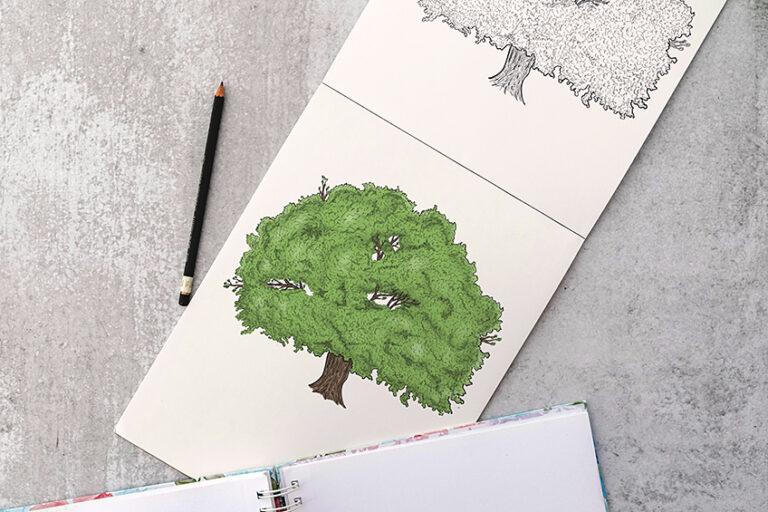 Baum zeichnen – Lerne realistische Bäume zu malen