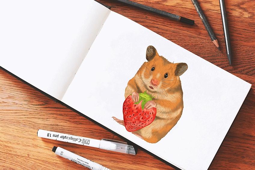 Hamster malen