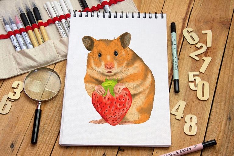 Hamster zeichnen – Einfache Anleitung für deine Hamster Zeichnung