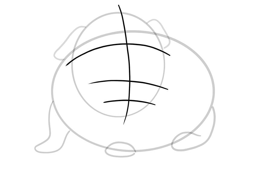 Meerschweinchen zeichnen Schritt 05