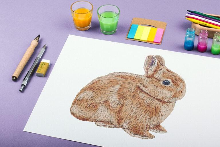 Osterhase malen – Zeichne einen realistischen Hasen in wenigen Schritten