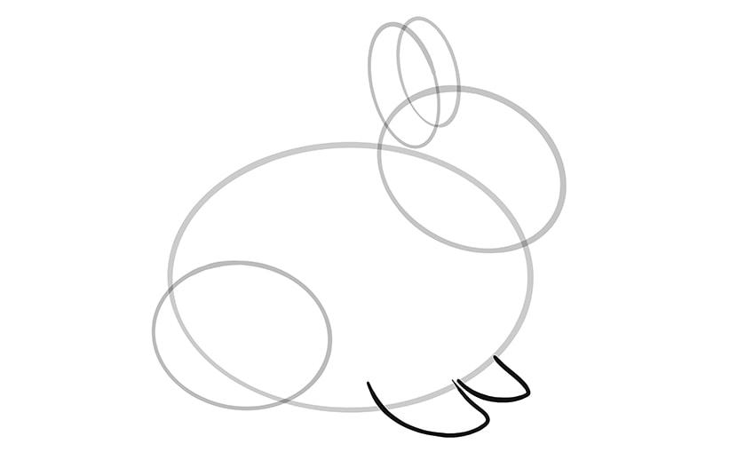 Osterhase zeichnen Schritt 05