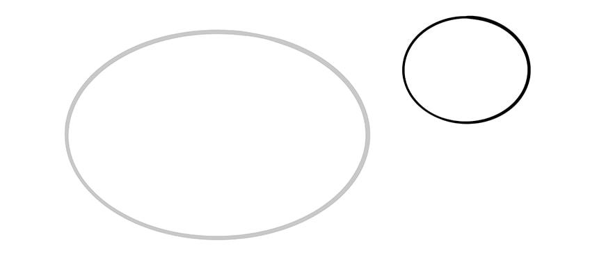 frettchen zeichnen schritt 02