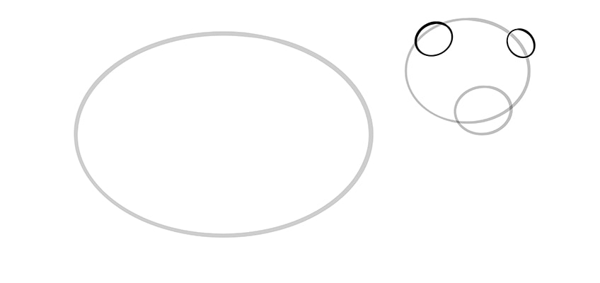 frettchen zeichnen schritt 04