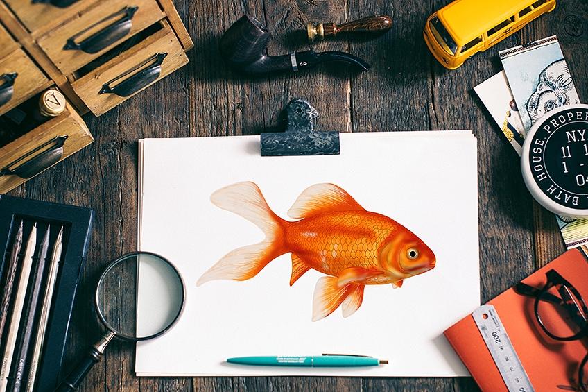 goldfisch malen