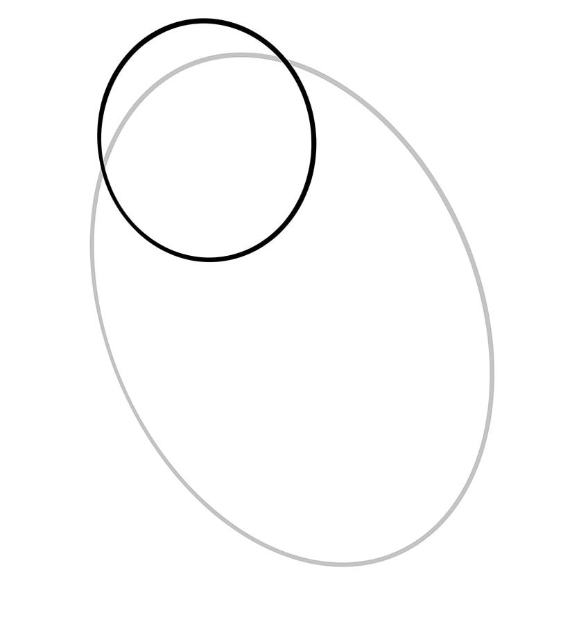 hamster zeichnen schritt 02