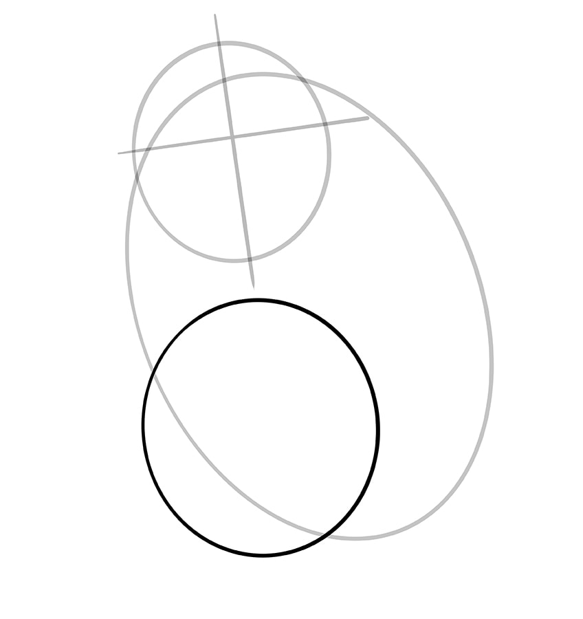 hamster zeichnen schritt 04