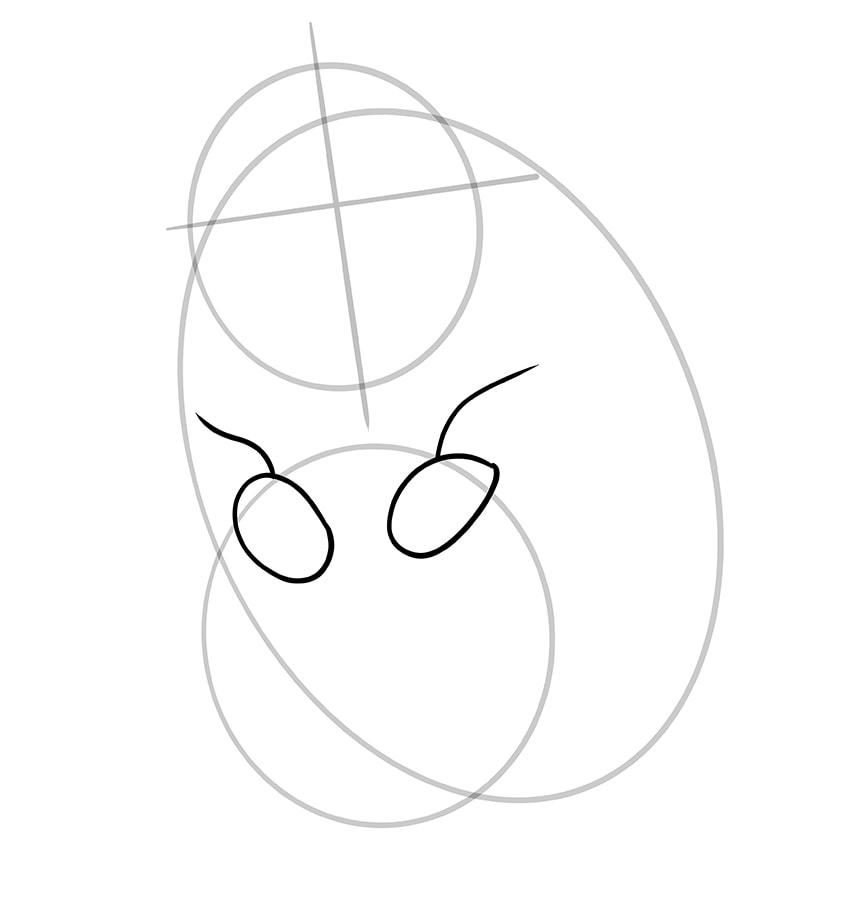 hamster zeichnen schritt 05