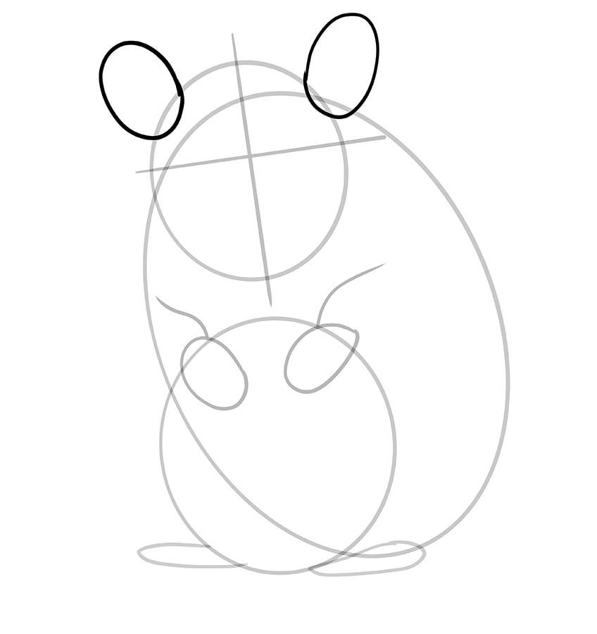 hamster zeichnen schritt 07
