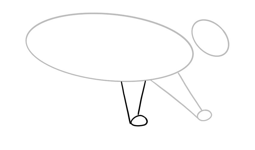 katze zeichnen 04