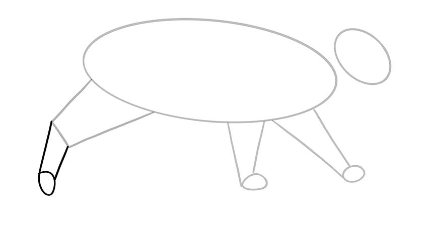 katze zeichnen 06