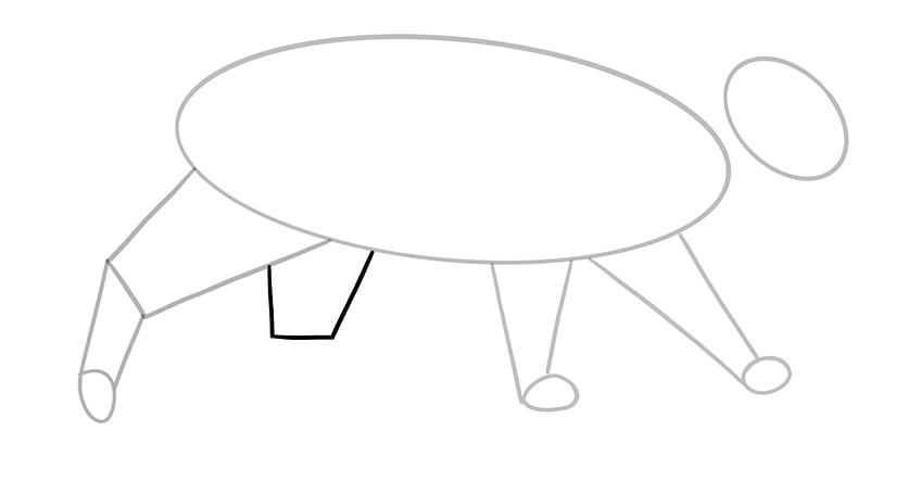 katze zeichnen 07