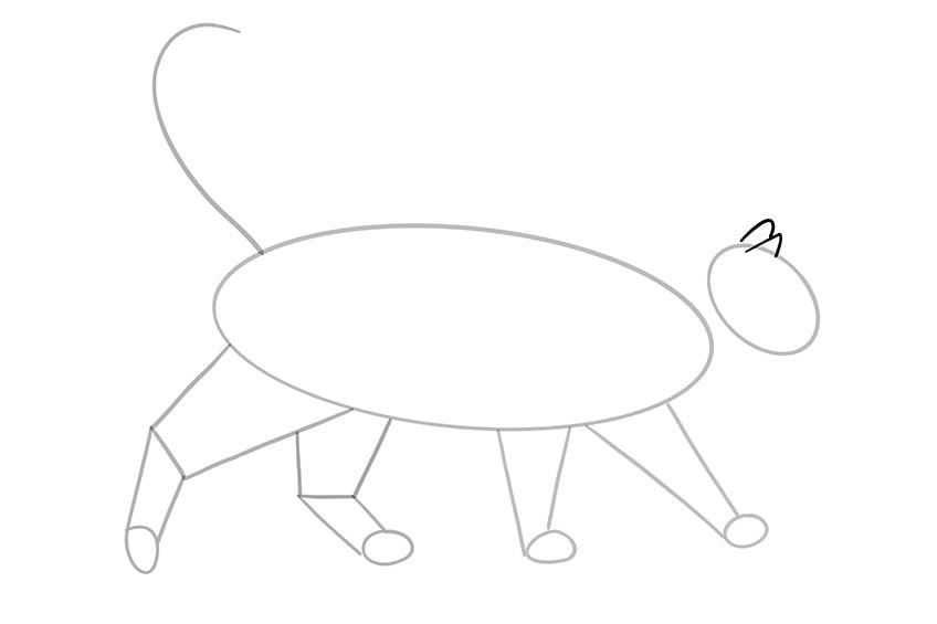 katze zeichnen 10