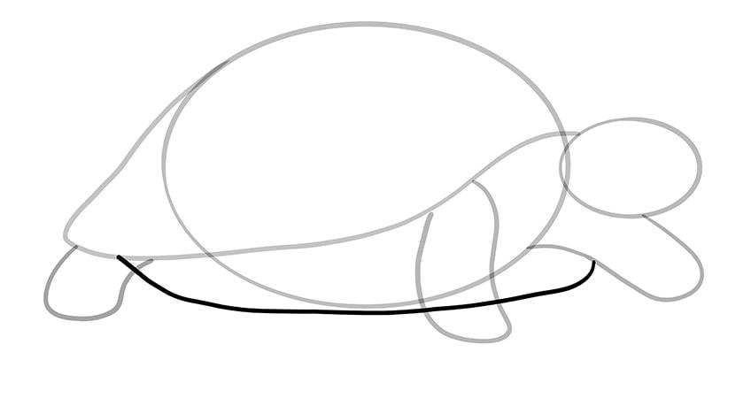 schildkroete zeichnen Schritt 07