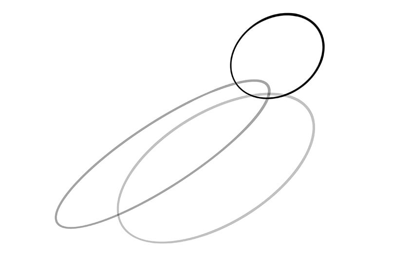 wellensittich zeichnen 03