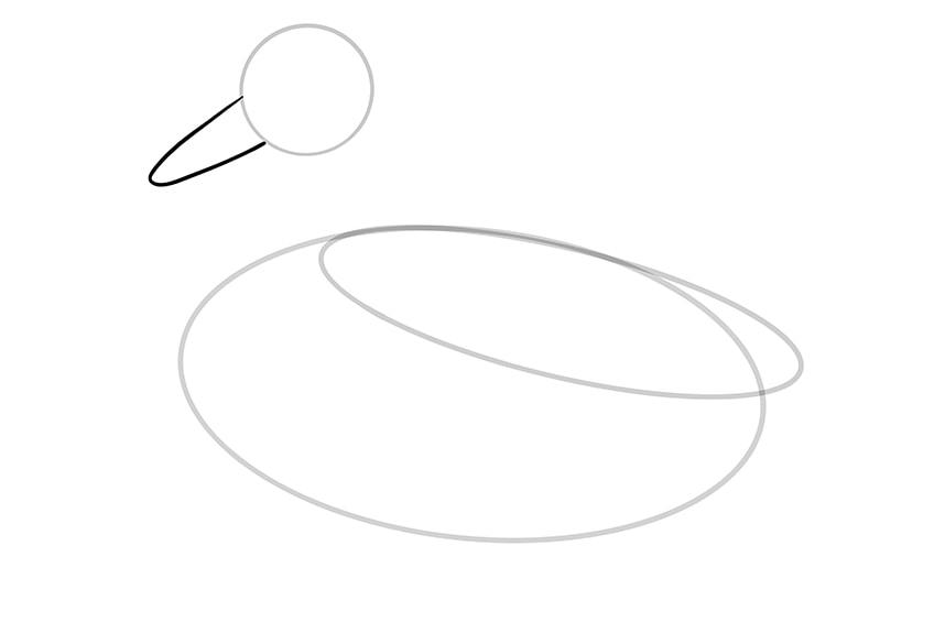 Ente zeichnen 04