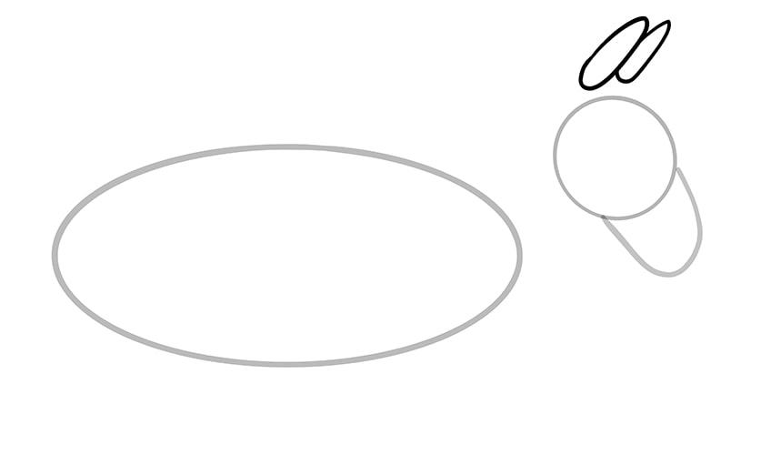 Esel zeichnen 04