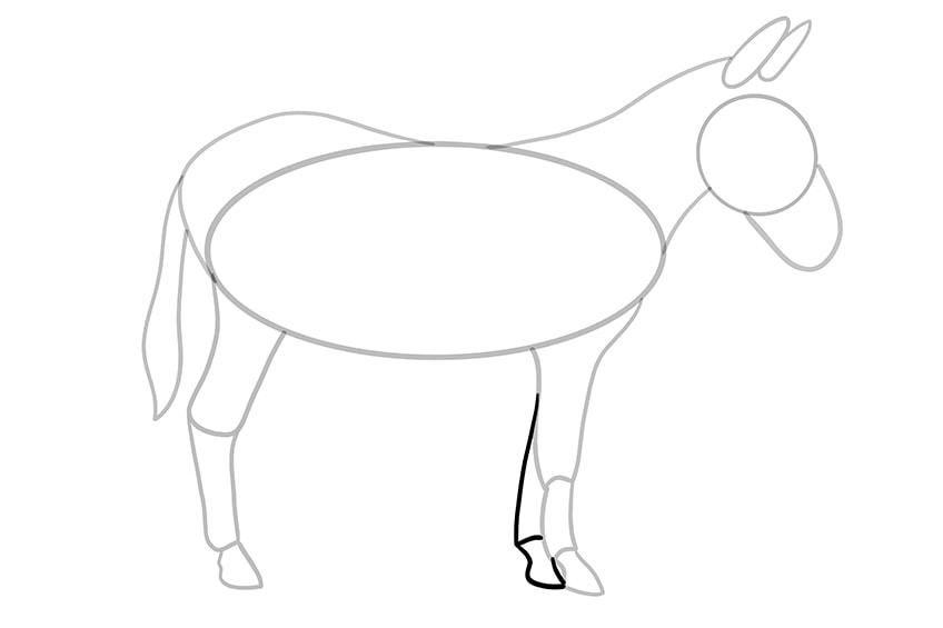 Esel zeichnen 10