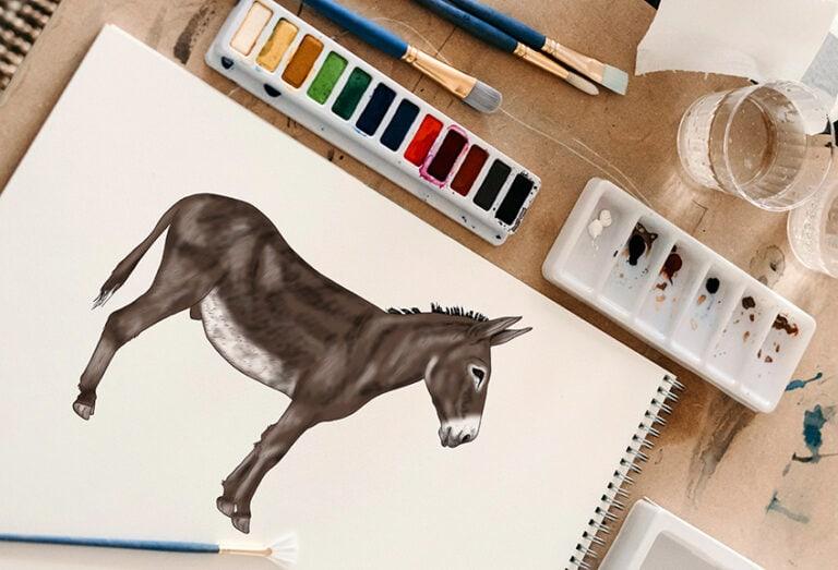 Esel zeichnen – Einen realistischen Esel in einfachen Schritten malen