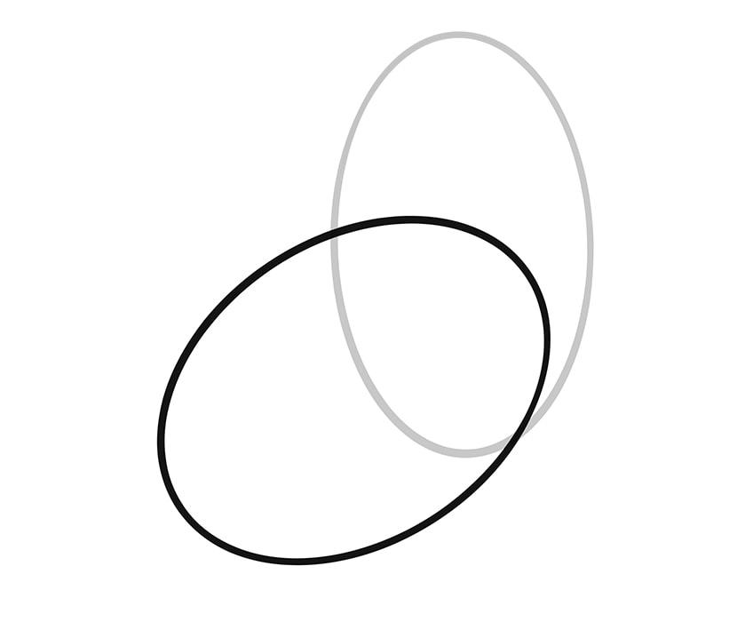 Hahn zeichnen 02