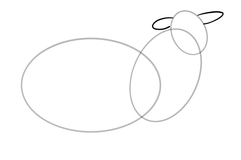 Schaf zeichnen 04