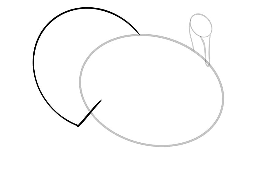 Truthahn zeichnen 04