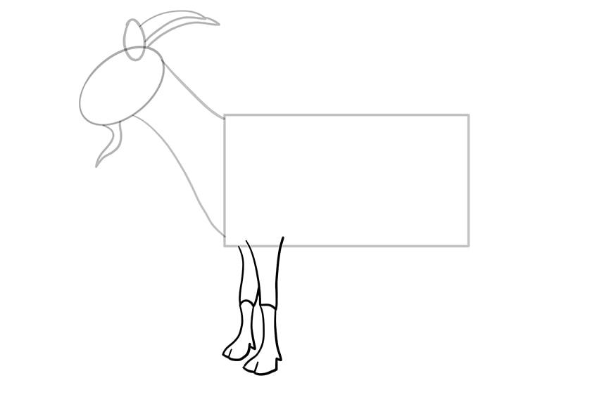 Ziege zeichnen 06