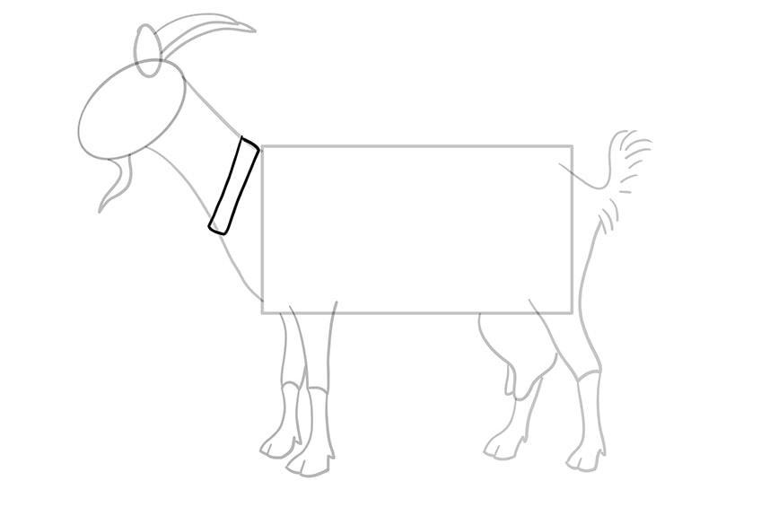 Ziege zeichnen 09