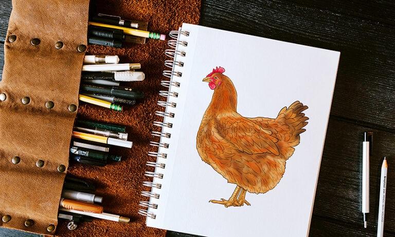 Huhn zeichnen – Einfaches Tutorial zum Zeichnen von Hühnern