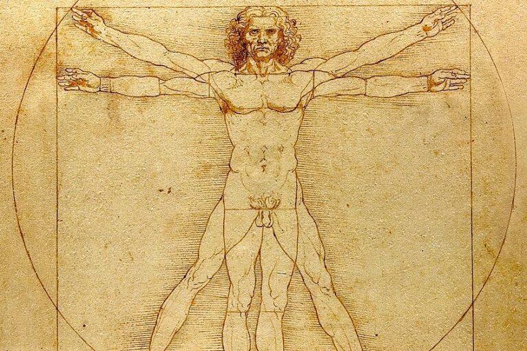 Vitruvianischer Mensch Da Vinci – Alle Fakten und Hintergründe